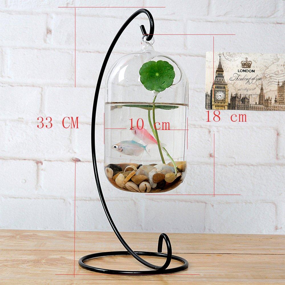 Pecera decorativa de cristal transparente, colgante y con soporte de metal: Amazon.es: Hogar