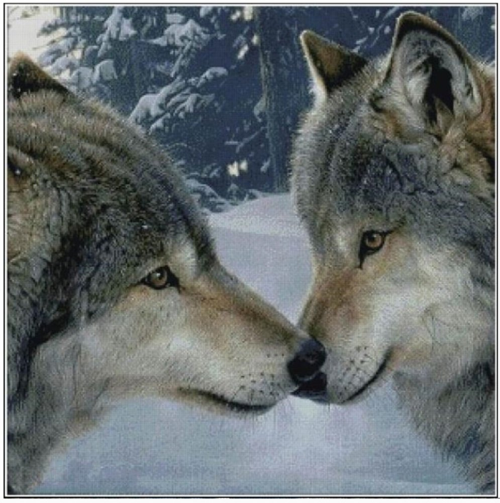 Kreuzstich Stickpackung Stickbild Stickvorlage vorgedruckt Wolf Paar (HA010) No Name