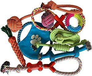 ANPI Juguetes para Perros de 10 Piezas, Juego de Juguetes masticables, Seguro, no tóxico, Duradero, Multifuncional, Perros