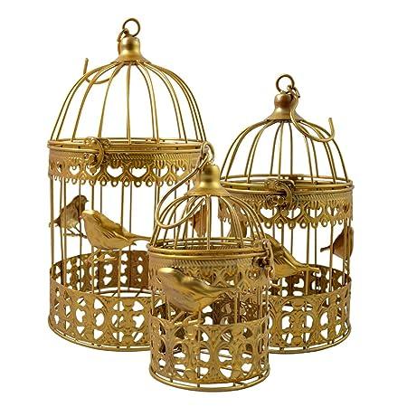 Juego de 3 jaulas de pájaros oro mariposa: Amazon.es: Hogar