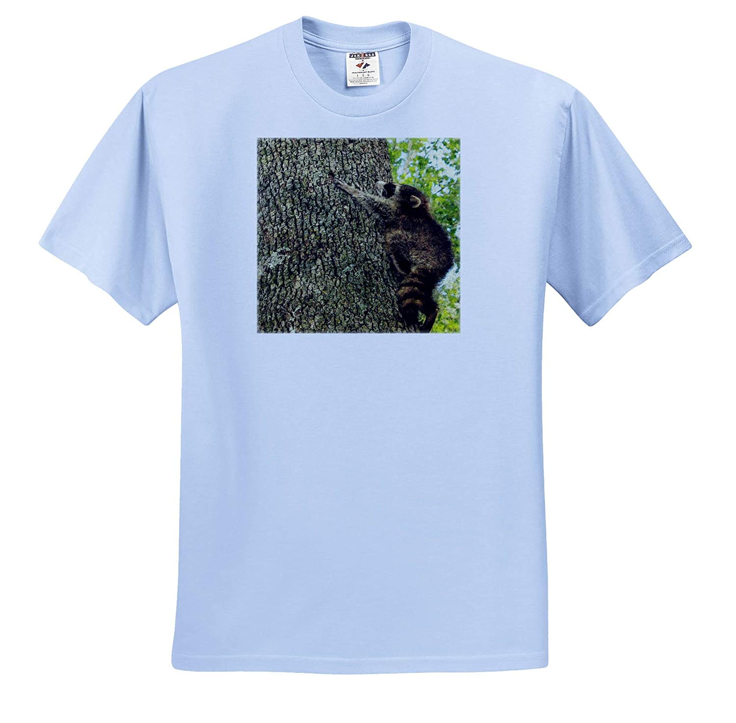 T-Shirts Baby Raccoon in a Tree Digital Painting 3dRose Cassie Peters Wildlife
