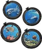 4 tlg. XL Set: Wandtattoo / Sticker - Bullauge - Fenster im Schiff Delfin Schildkröten Delphin Fisch - Wandsticker Aufkleber Flugzeug Wandaufkleber Badezimmer Fische
