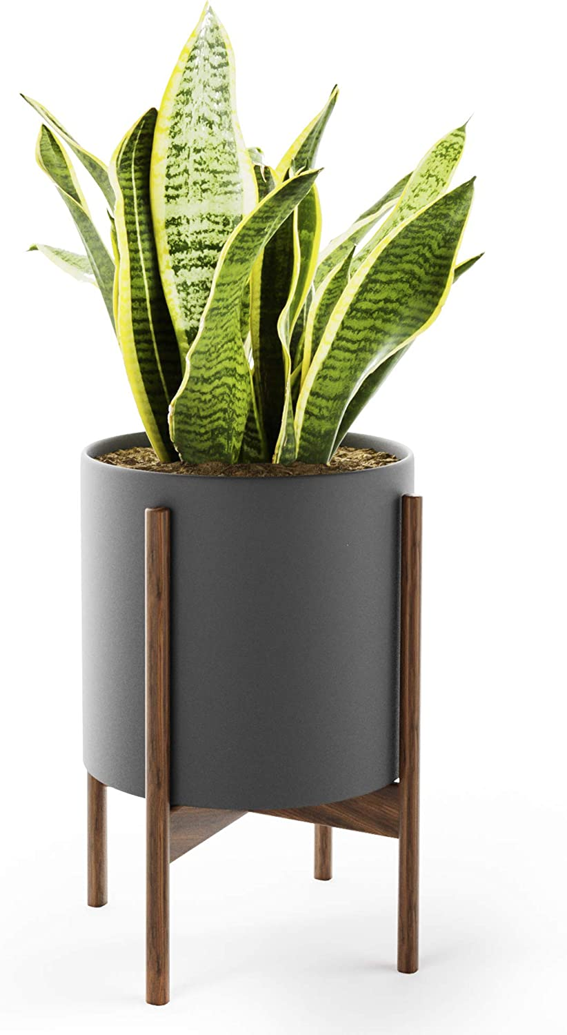 Mid Century Plant Stand with Pot with Drainage - Matte Black Ceramic Planter with Stand Made of Walnut - Modern 10 inch Planter - Perfect Pot for Plants Indoor Plant Stand NOT Adjustable