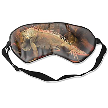 Amazon.com : Silk Sleep Mask Animal Iguana Lizards Eye mask for Sleeping Soft Sleeping Mask Adjustable Blindfold Eyeshade Comfortable Eye Cover for Travel ...