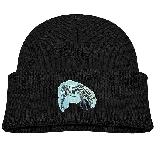81e6f98a991 Amazon.com  Zebra Animal Winter Baby Beanie Hat Soft   Warm Chunky Skull Toddler  Knit Hats Cap for Kids Black  Clothing