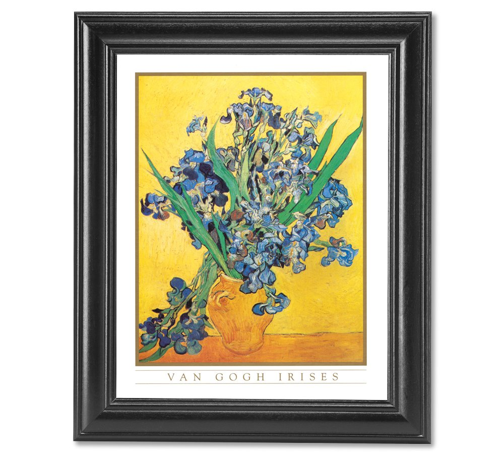 Amazon vincent van gogh irises vase flower wall picture amazon vincent van gogh irises vase flower wall picture framed art print furniture posters prints reviewsmspy