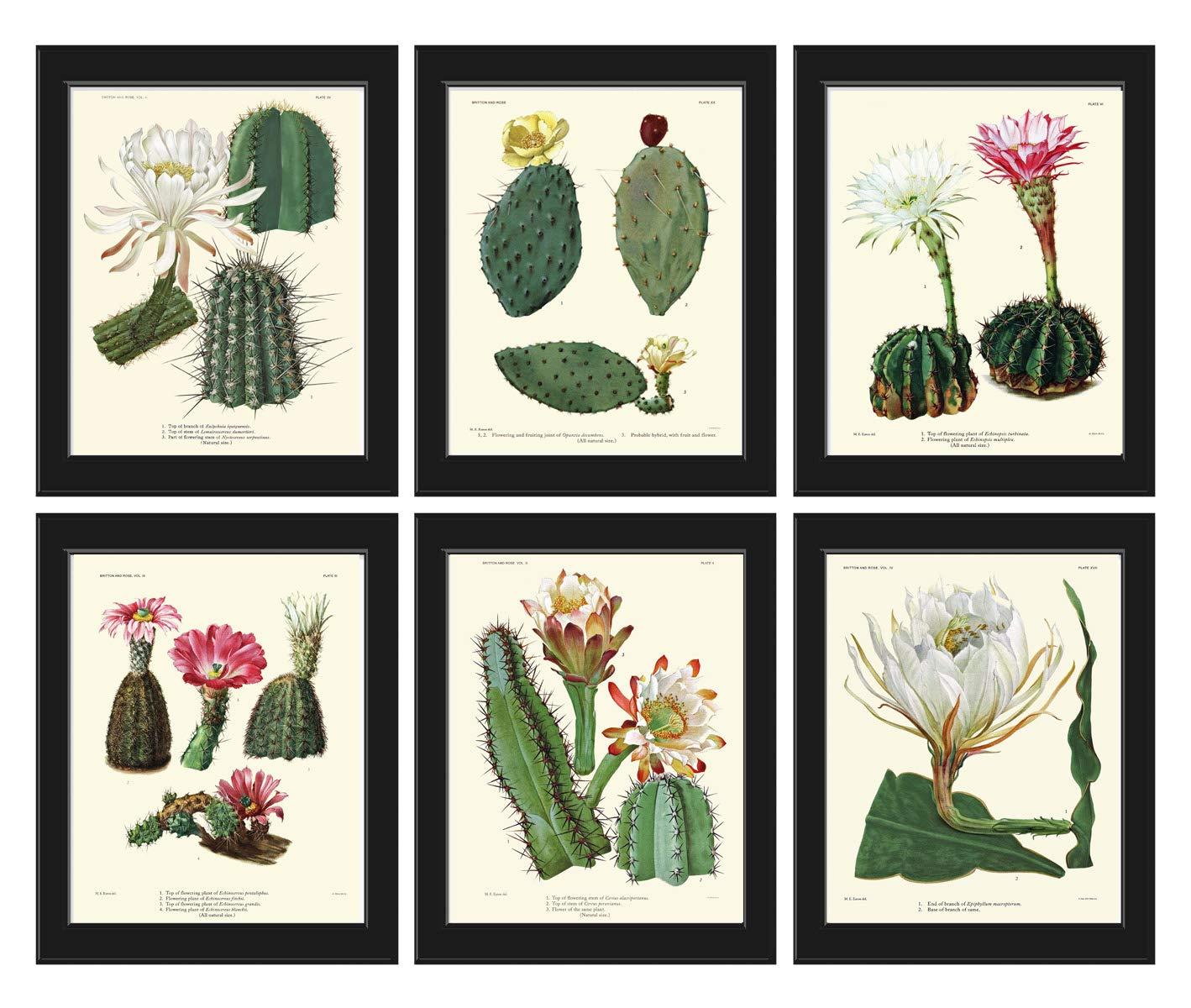 Cactus Wall Decor Cactus Print Desert Yellow Print Desert Print Desert Wall Art Desert Home Decor Cactus Wall Art Digital Download