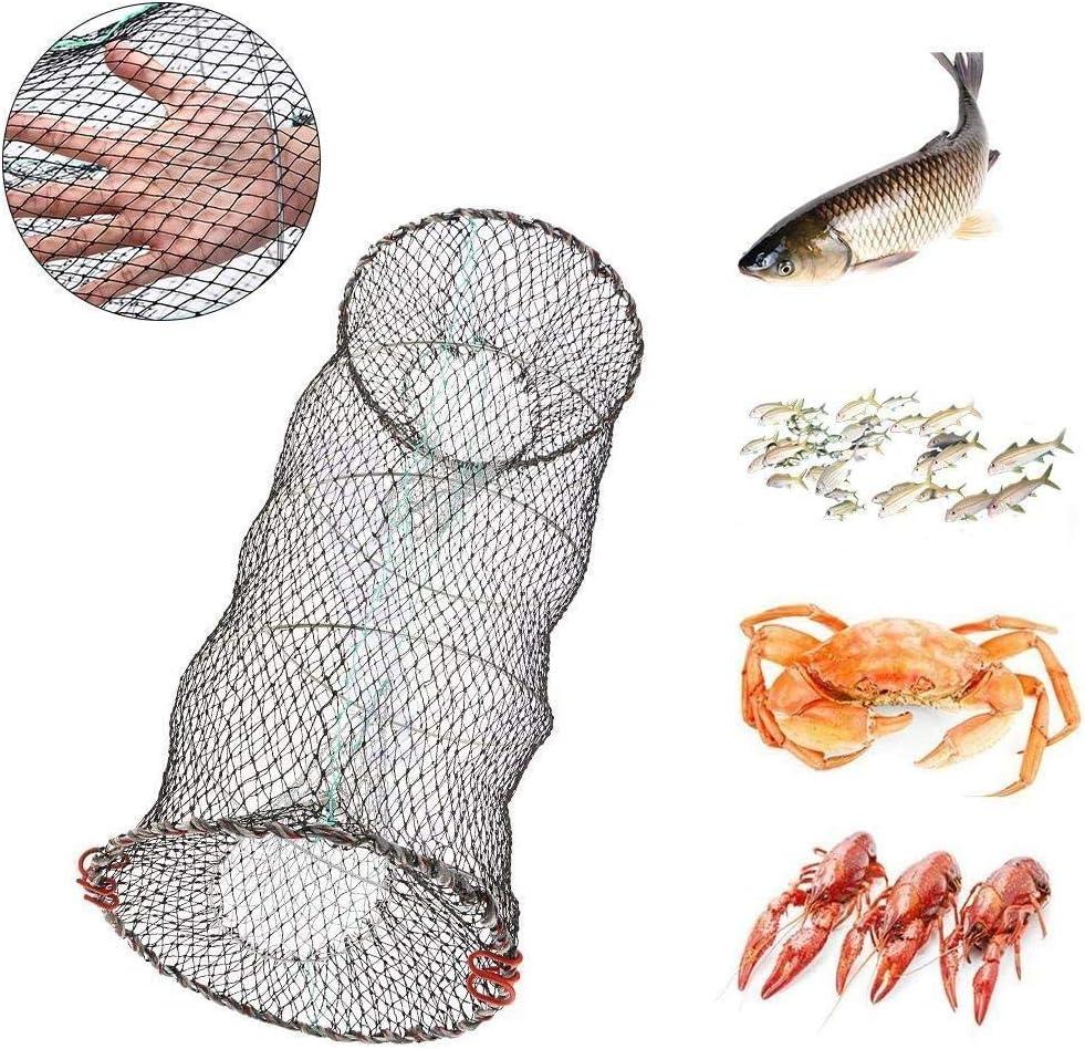 Yangyme Kescher Angeln Fischk/öder Faltbares Netz Krabbenfalle Faltbares Netz Fischernetze Tauchk/äfig for Krabben Fische Minnow Crawdad Garnelen