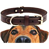 Genuine Leather Dog Collar With Alloy Buckle and Double D Rings