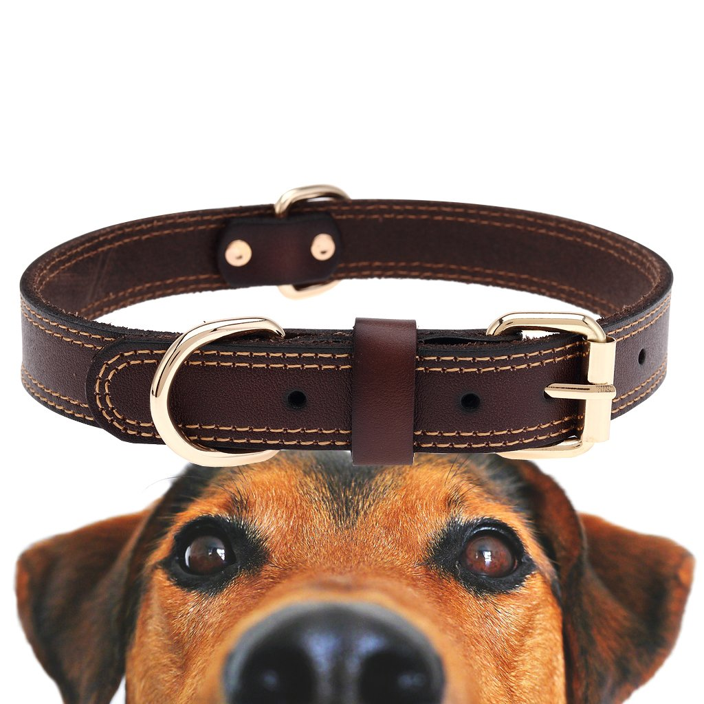 TREVANO Genuine Leather Dog Collar With Alloy Buckle and Double D Rings (Large, Brown)