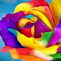 TOYHEART 200 Piezas De Semillas De Flores Premium, Semillas De Rosas Arcoíris, Cultivos Decorativos De Crecimiento…
