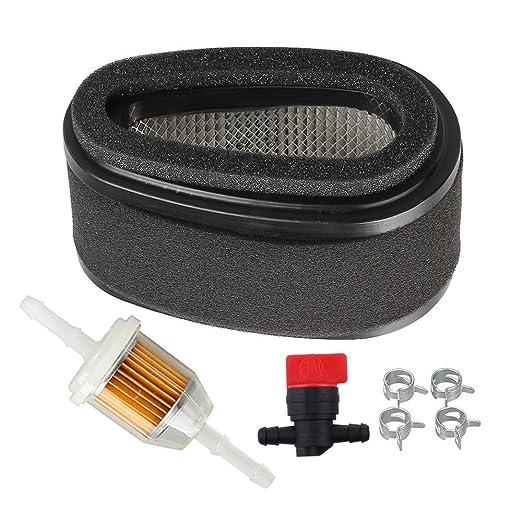 HIPA 1013 - 2093 Filtro de Aire + filtro de gasolina válvula de ...