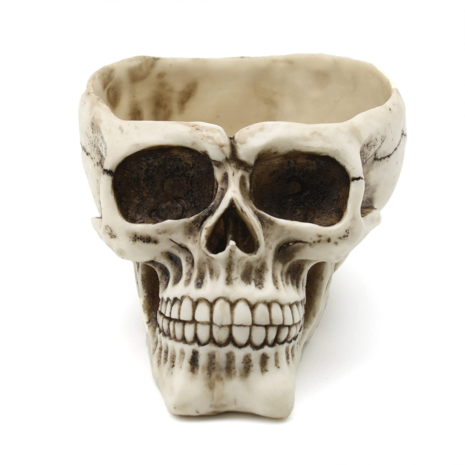 Sunstar Decorative Hollow Skull Bowl