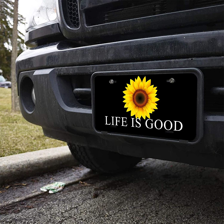 Amcove Make America Great Again Aluminum Car Metal License Plate for Car Four Holes Car Tag 12 X 6