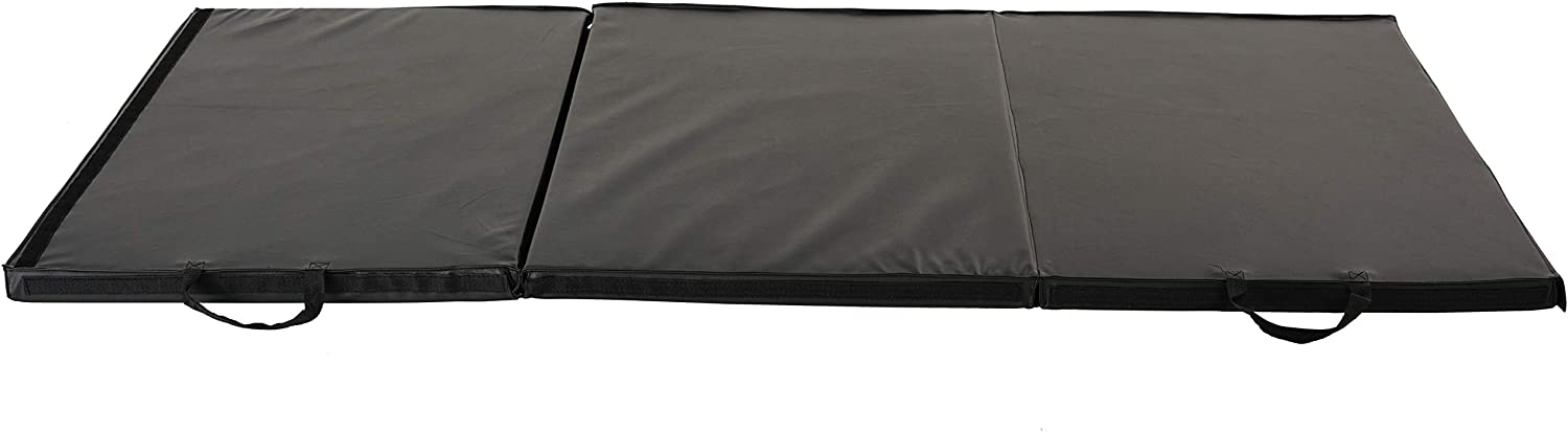 Sunny Health & Fitness Folding Gymnastics Mat - Extra Thick with Carry Handles - for Exercise, Yoga, Fitness, Aerobics, Martial Arts, Gym Mat, Cardio, Tumbling