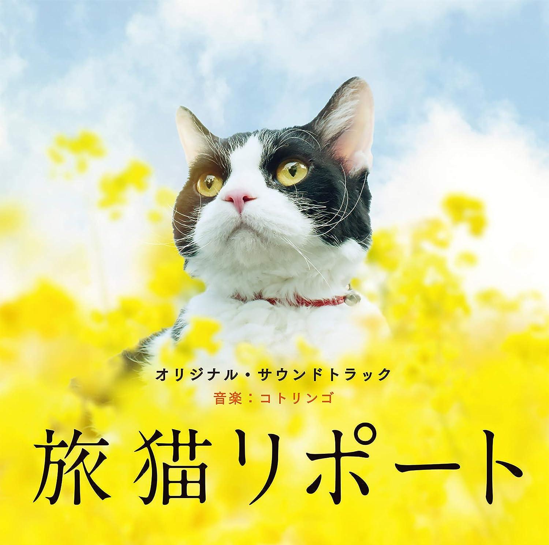 旅 猫 リポート ナナ