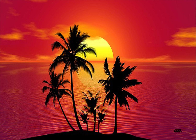 Rogue River Tactical Large Hawaii Sunset Palm Tree Coastal Beach Canvas Print Wall Decor Art Decoration 20x16 Inch