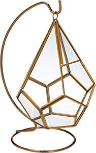 "Circleware Terraria Glass Plant Terrarium, Gold Frame with Stand, Home Decor Flower Balcony Display Box and Garden Gifts, 7"" x 9"", Triangle-Gold-7x9"