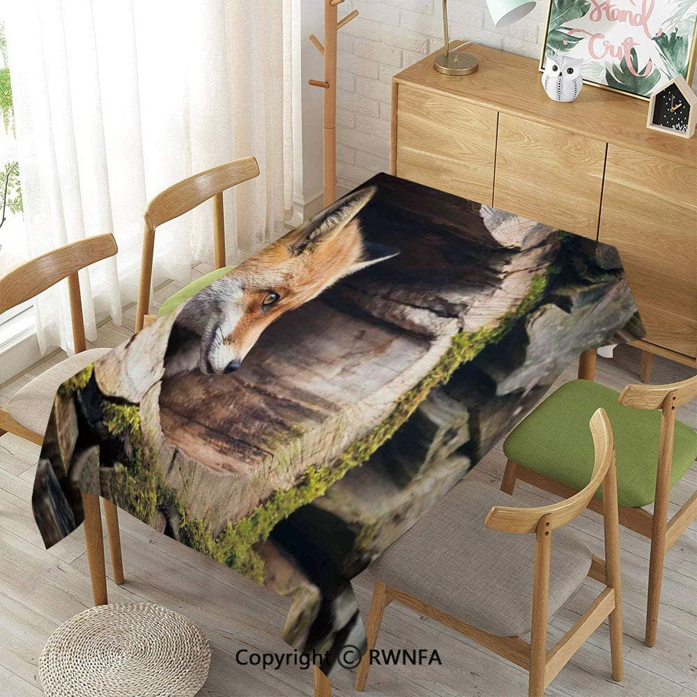 """Tablecloth for Dining Room for Rectangle Tables,True Fox Vulpes Inside Wood Log Holes Exotic Furry Creature Wildlife Creature Design,Indoor Outdoor Camping Picnic,Tan,55""""X 86"""""""