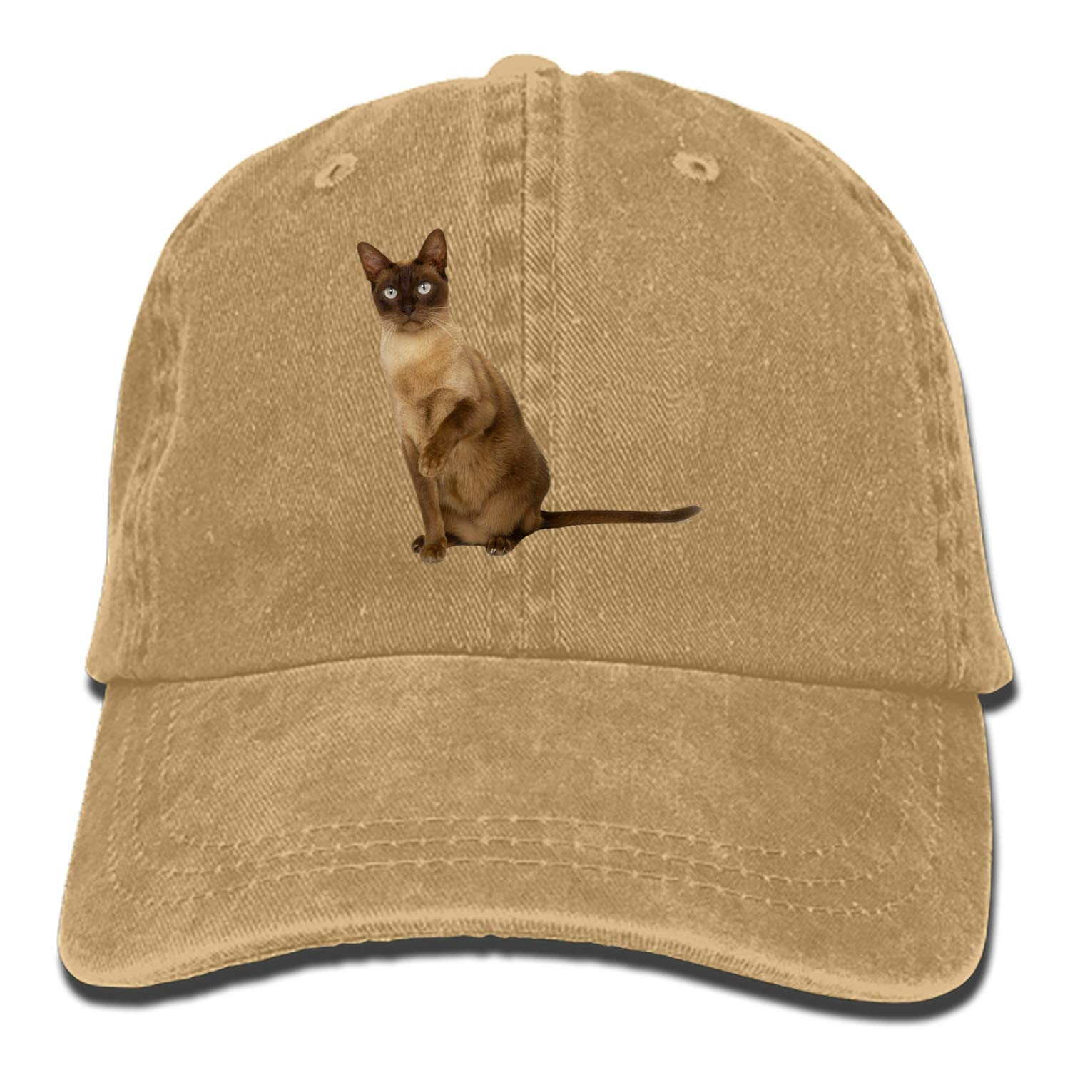 The Siamese Cats Adult Denim Dad Solid Baseball Cap Hat