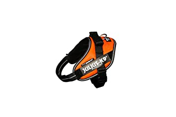 Julius K9 16IDC-FOR-M IDC Power Harness, Tamaño Mini, Naranja UV, Orange: Amazon.es: Productos para mascotas