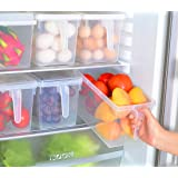SANNIX 2 PCS Kitchen Pantry Refrigerator Freezer Storage Container Box with Hinged Lid