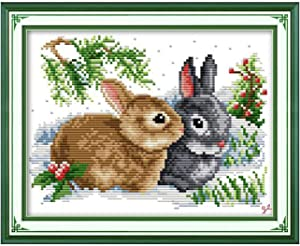 Funchey Cross Stitch Kits Stamped Full Range of Patterns Embroidery Starter Kits for Adult Beginners and Kids DIY Easy Printed Cross-Stitch Kits for Home Decor 11CT-Lucky Rabbits 13×9.4 inch