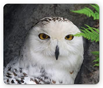 Owl Minile Mouse Pad Owl Design Mousepad Non-Slip Rubber Rectangle Gaming Mouse Pad Mouse Pads for Computers Laptop