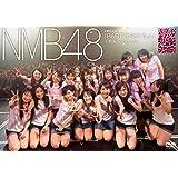 2期生公演「PARTYが始まるよ」千秋楽-2012.5.2- [DVD]