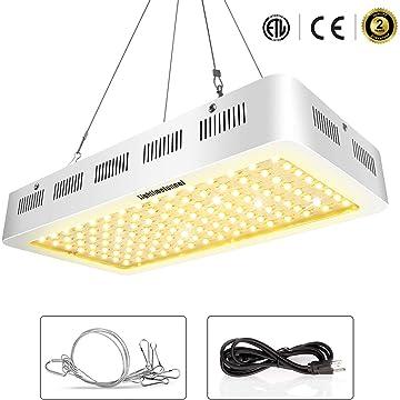reliable Lightimetunnel Indoor