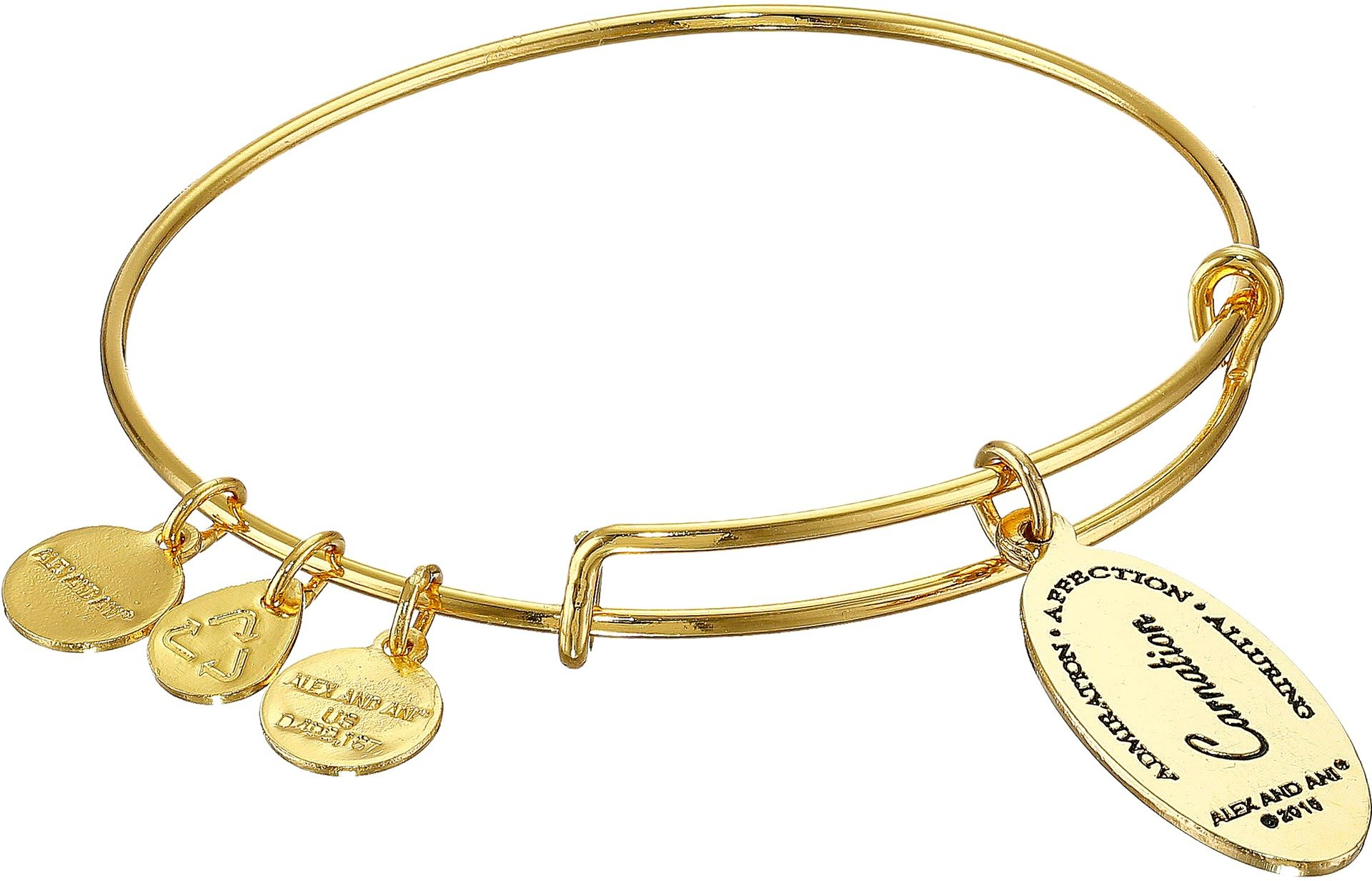 Alex and Ani Love Spell Carnation Gold-Tone Expandable Wire Bangle Bracelet by Alex and Ani (Image #2)