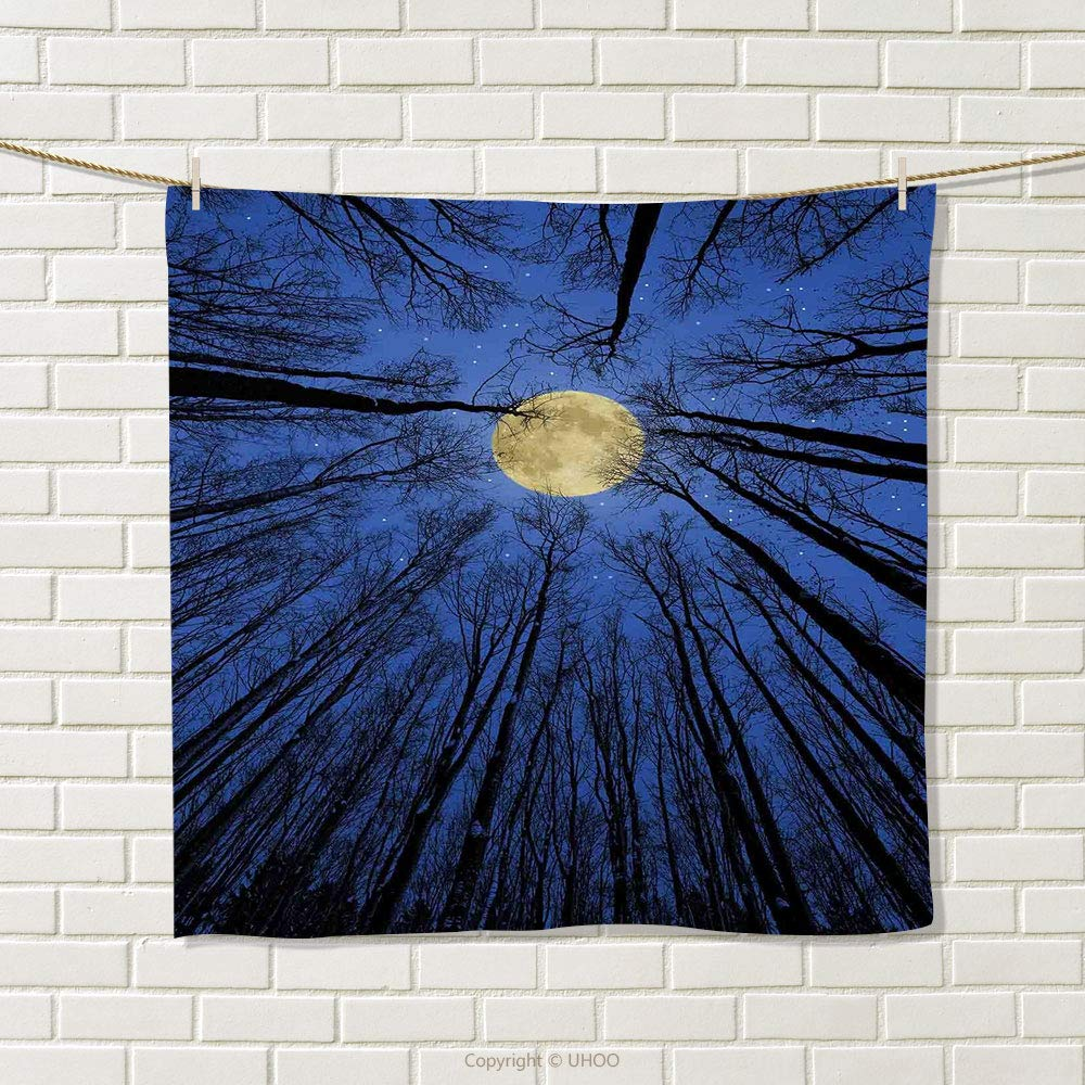 smallbeefly Nature Hand Towel Full Moon Depiction in Woods Star Night Heavenly Lunar Treetops Up Space Universe Art Quick-Dry Towels Blue Size: W 20'' x L 39''