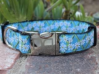 product image for Diva Dogs UBS107 Daisy Dog Collar - Medium & Large Sized