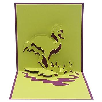 Amazon.com: Stork – Tarjeta de cumpleaños 3D, tarjeta de ...