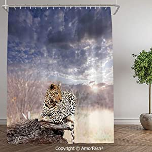 SCOCICI Safari Decor,Small Size,Bathroom Shower Curtain Funny Quotes Shower Curtains,72 x 72 Inch,Leopard Setting on Tree Trunk Under Last Sunlights of Sunset Dark Cloudscape Decorative,Grey Beige