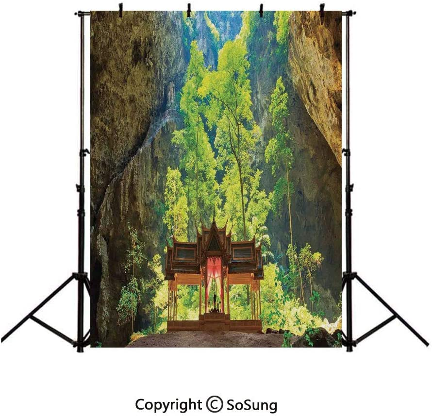 9x16Ft Vinyl Natural Cave Decorations Backdrop for Photography,Latent Pavilion in Between the Cliffs Discovery of Faith in the Nature Art Picture Background Newborn Baby Photoshoot Portrait Studio Pro