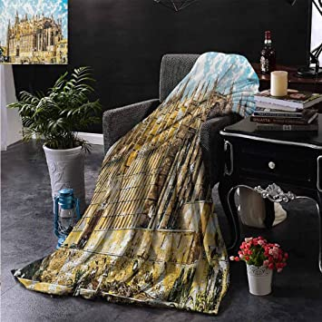 Amazon.com: ZSUO Faux Fur Throw Blanket Big Gothic Building ...