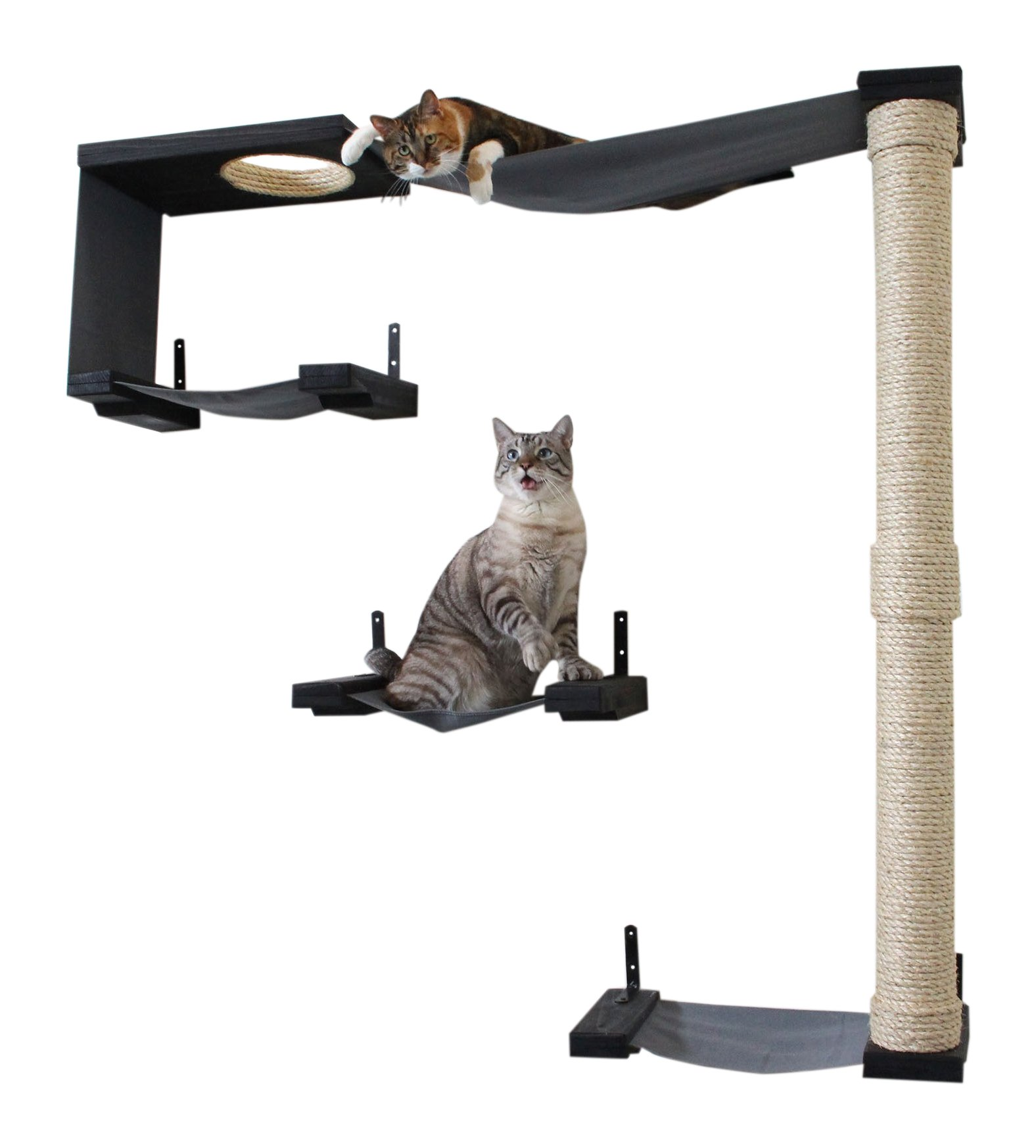 CatastrophiCreations Sky Track Hammock & Climbing Activity Center Handcrafted Wall-Mounted Cat Tree, Onyx
