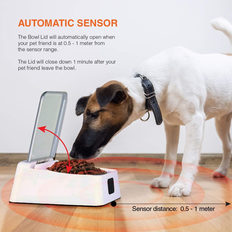 Comedero Gatos y Perros Novedad con Apertura y Cierre automático para Evitar Mal Olor, plagas, Humedad Comida.