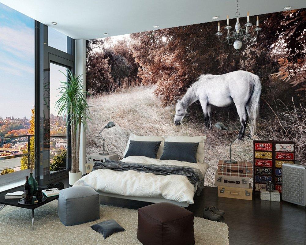 馬の写真の風景の背景壁の3D 写真の壁紙寝室の壁画の研究壁紙 カスタマイズサイズ シルク生地 Wapel 370X240Cm(145.67X94.49 In) B07DGWTBDP 370x240cm(145.67x94.49 in)