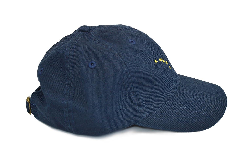 a761ae609c5 Amazon.com  Ann Arbor T-shirt Co. Alaska State Flag Low Profile ...