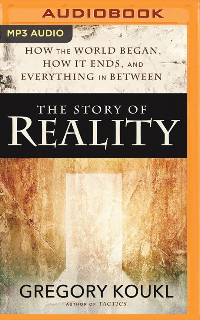Realitys Fire (The Reality Chronicles Book 3)