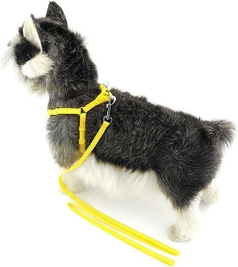 Zunea - Arnés de Nailon para Mascotas, diseño de Lunares ...