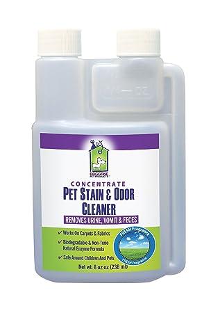 Pet orina Manchas y olor enzimática Concentrate por Doggone ...