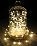 Fairy Lights 120 LED Star String Lights 2m USB Powered for Christmas Halloween Party Wedding Festival Home Bedroom Table Deor (Warm White)