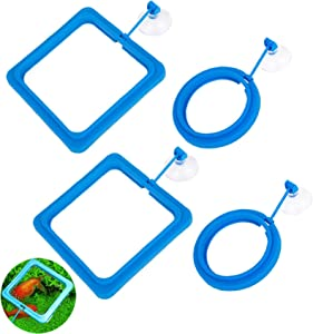 Lucky Interests 4PCS Fish Feeding Ring, Square and Round Shape Floating Food Feeder, with Suction Cup to Install Aquarium, Blue Fish Food Feeder Circle for Guppy, Goldfish and Other Small Fish
