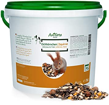 AniForte Squirrel Food Mix 2kg 100% Natural Feed for Squirrels, Chipmunks &  Wild Birds | Sunflower Seeds, Hazelnuts, Rosehips, Cedar nuts, Raisins