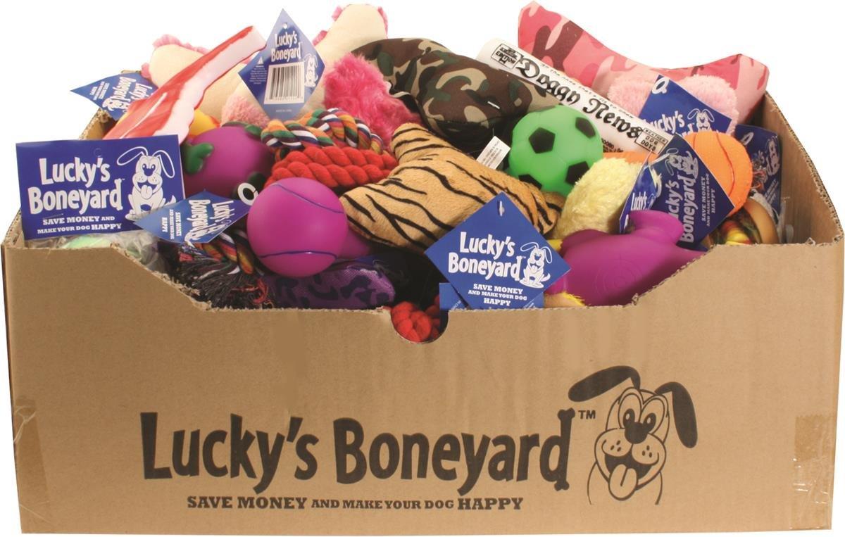 PetSport 22222 60 Piece Luckys Boneyard Tear Away Carton Assorted Display
