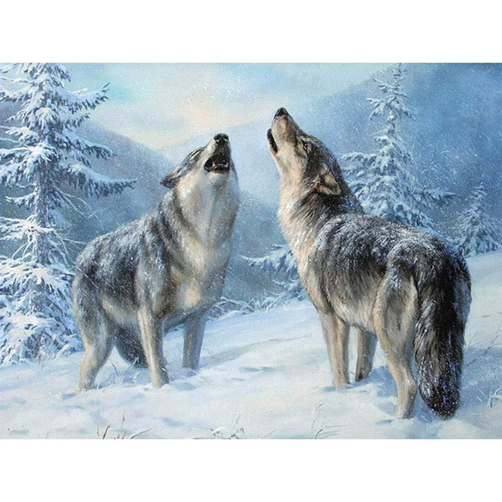 DIY 5D Diamond Painting Kit, Hoshell Full Diamond Seaside Beach Wolf Embroidery Rhinestone Cross Stitch Arts Craft Supply for Home Wall Decor for Adults by Number Kit (C)