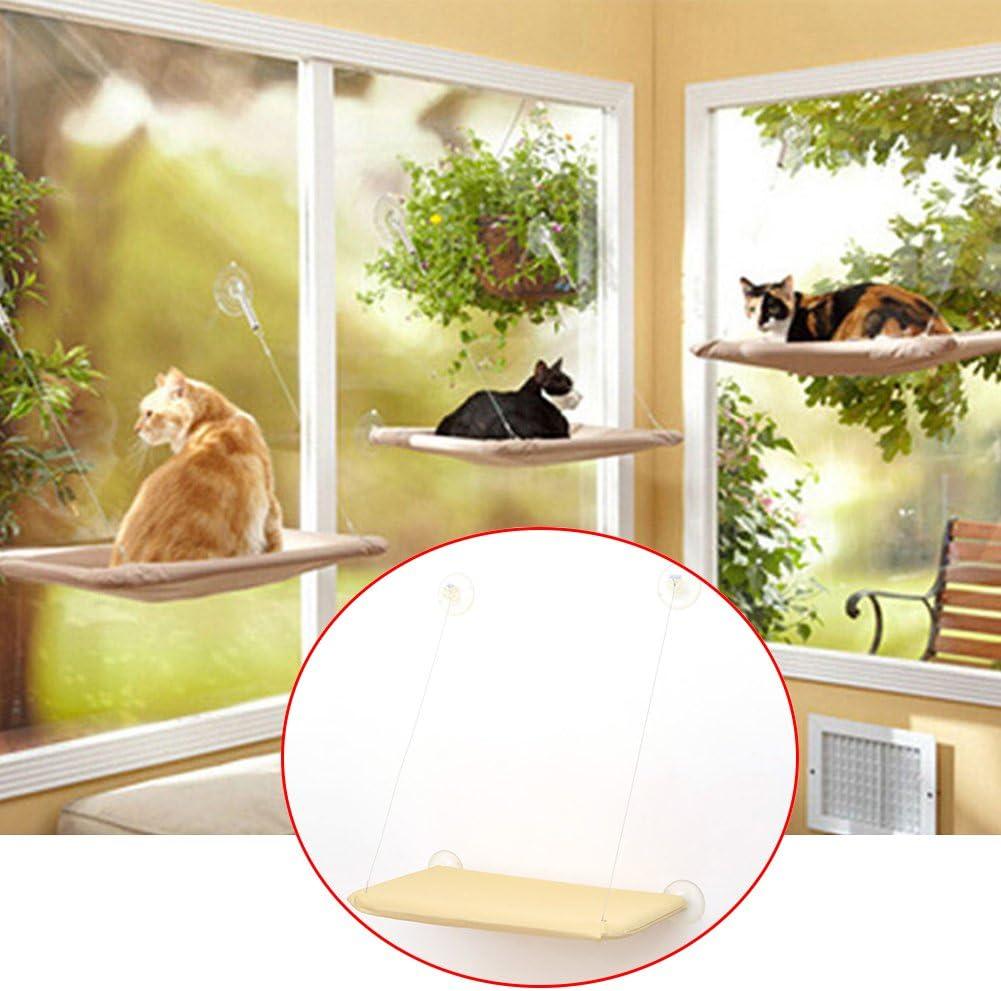 Hamaca para mascotas con diseño de gato y ventana montada en la cama Sunshine para perca, cojín para perca, cama para radiador para gatos y mascotas pequeñas.: Amazon.es: Productos para mascotas